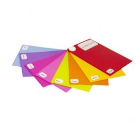 Porte-carte grise GOBI GLACE : 3 volets  PVC gomme glacée